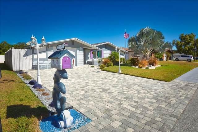 7321 Robstown Drive, Port Richey, FL 34668 (MLS #U8140559) :: Charles Rutenberg Realty