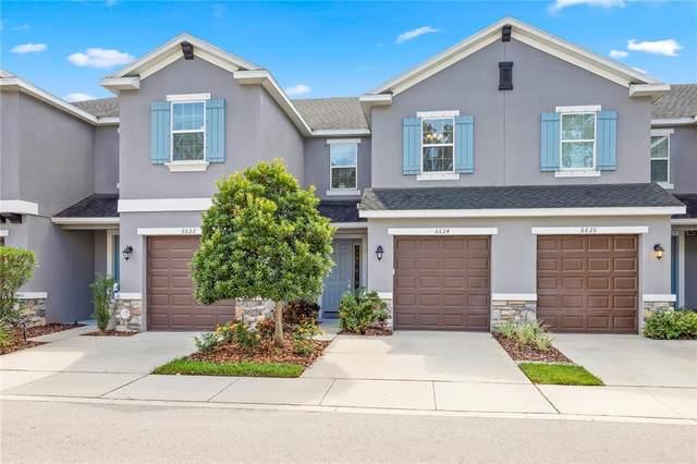 6624 Citrus Creek Lane, Tampa, FL 33625 (MLS #U8140616) :: Medway Realty