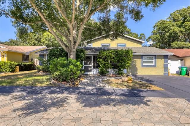 11207 Golden Ridge Drive, Seminole, FL 33772 (MLS #U8140645) :: Heckler Realty