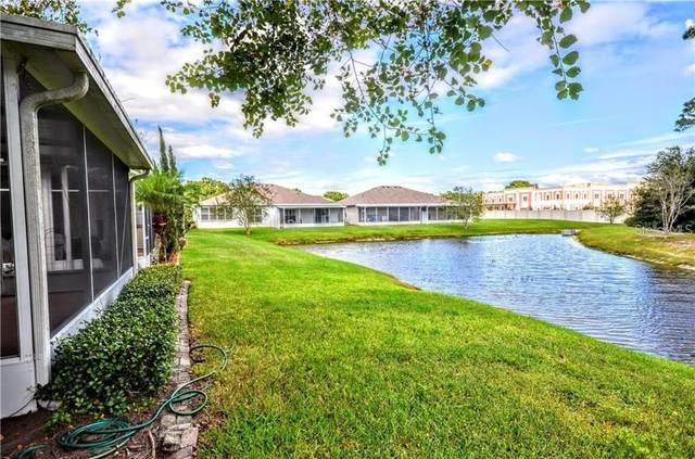 10125 Mowry Lane, Tampa, FL 33625 (MLS #U8140654) :: Medway Realty