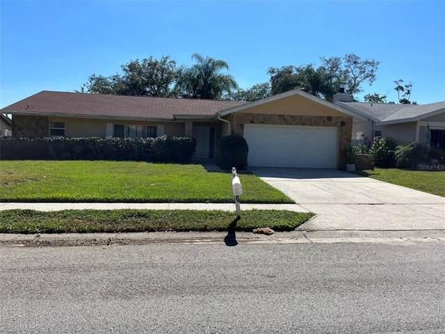 3129 Hillside Lane, Safety Harbor, FL 34695 (MLS #U8140659) :: Medway Realty