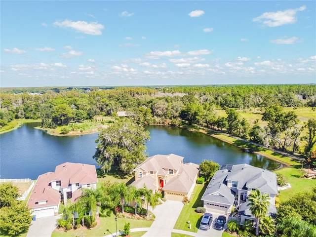 3431 Diamond Falls Circle, Land O Lakes, FL 34638 (MLS #U8140690) :: Orlando Homes Finder Team