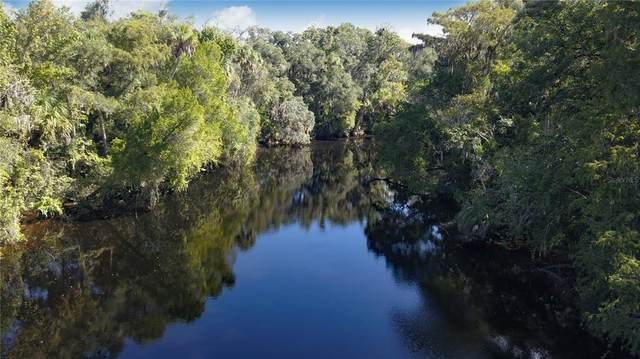 10564 N Dawnflower Point, Crystal River, FL 34428 (MLS #U8140744) :: Everlane Realty