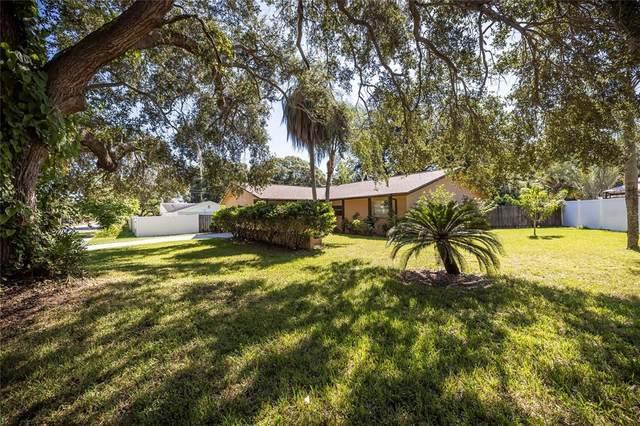 1705 Copper Kettle Lane, Dunedin, FL 34698 (MLS #U8140814) :: Pristine Properties