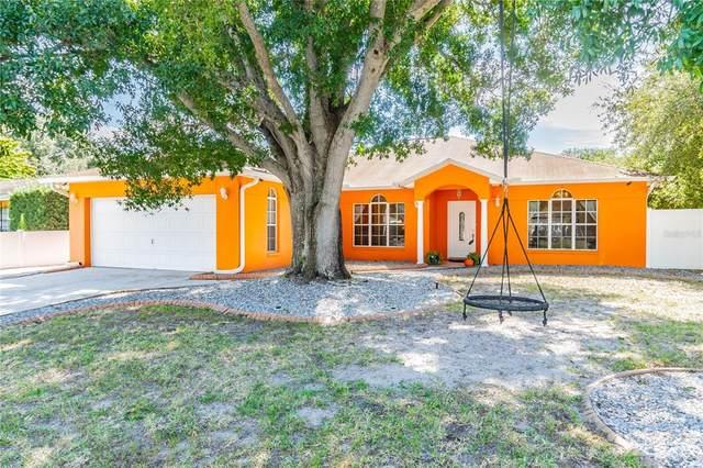 2908 W Pearl Avenue, Tampa, FL 33611 (MLS #U8140828) :: Pristine Properties