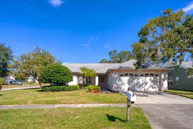 2931 Cara Court, Palm Harbor, FL 34684 (MLS #U8140901) :: The Brenda Wade Team