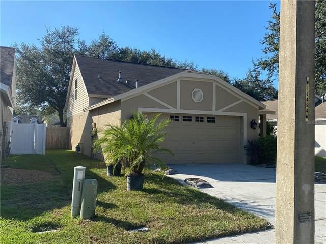 1745 Horsechestnut Court, Trinity, FL 34655 (MLS #U8140907) :: Southern Associates Realty LLC