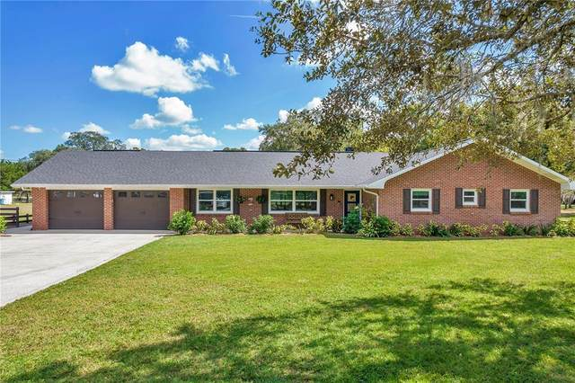 11710 Pine Forest Drive, New Port Richey, FL 34654 (MLS #U8140924) :: The Duncan Duo Team