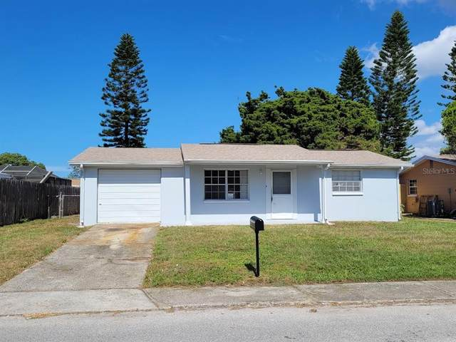 7731 Farmlawn Drive, Port Richey, FL 34668 (MLS #U8140929) :: Charles Rutenberg Realty