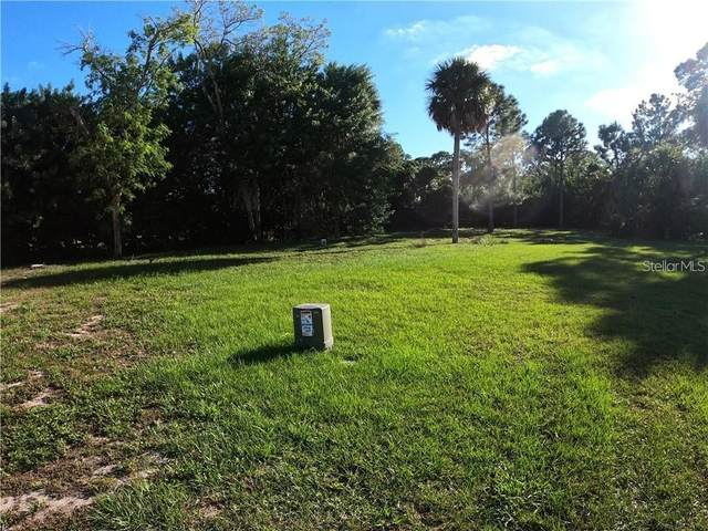 5611 Egrets Place, New Port Richey, FL 34652 (MLS #U8140944) :: Stiver Firth International