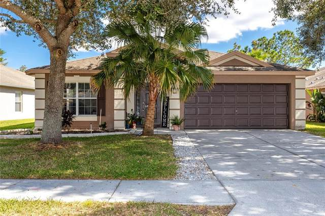802 Nodding Shade Drive, Brooksville, FL 34604 (MLS #U8140961) :: SunCoast Home Experts