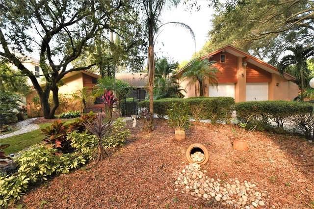 5185 Lake Valencia Boulevard W, Palm Harbor, FL 34684 (MLS #U8140968) :: RE/MAX Marketing Specialists