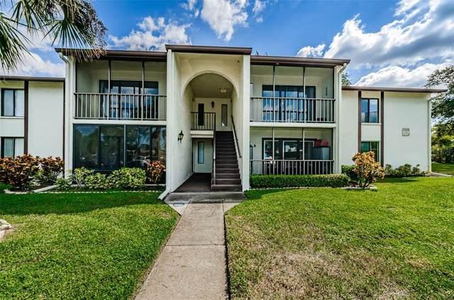 2568 Pine Ridge Way S D2, Palm Harbor, FL 34684 (MLS #U8140974) :: RE/MAX Marketing Specialists