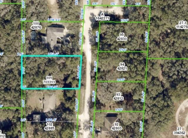 6175 Fairway Drive, Ridge Manor, FL 33523 (MLS #U8140999) :: SunCoast Home Experts