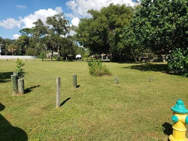 Tallahassee Drive, Tarpon Springs, FL 34689 (MLS #U8141088) :: Medway Realty