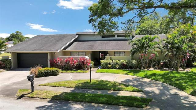 604 Knollwood Drive, Largo, FL 33770 (MLS #U8141095) :: The Robertson Real Estate Group
