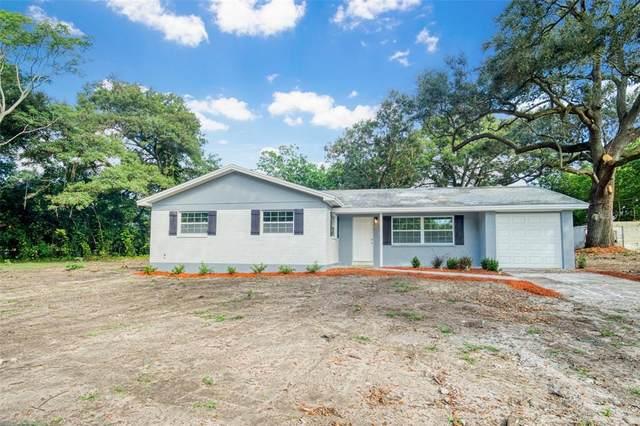2005 S Parsons Avenue, Seffner, FL 33584 (MLS #U8141228) :: Orlando Homes Finder Team