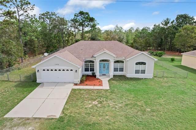 17478 Maberly Road, Weeki Wachee, FL 34614 (MLS #U8141235) :: RE/MAX Local Expert