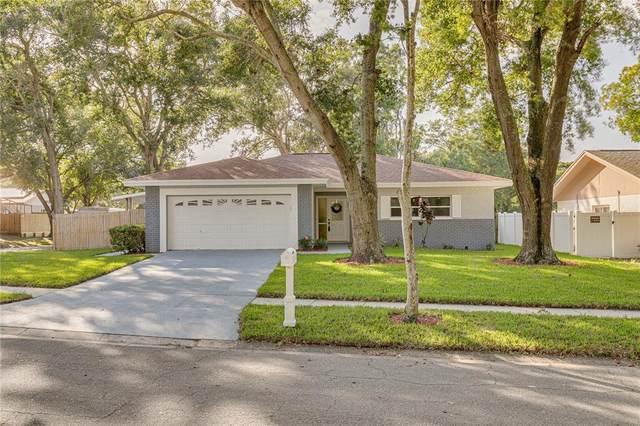 2208 Orangeside Road, Palm Harbor, FL 34683 (MLS #U8141292) :: Visionary Properties Inc