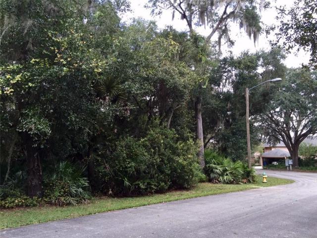 455 465 Sandy Bluff Trail, Deland, FL 32724 (MLS #V4709397) :: The Duncan Duo Team