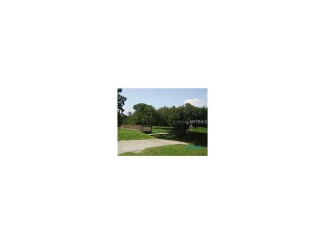 56017 Blue Creek Road, Astor, FL 32102 (MLS #V4710127) :: RE/MAX Realtec Group