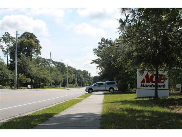 252 Fort Smith Boulevard, Deltona, FL 32738 (MLS #V4713151) :: KELLER WILLIAMS CLASSIC VI