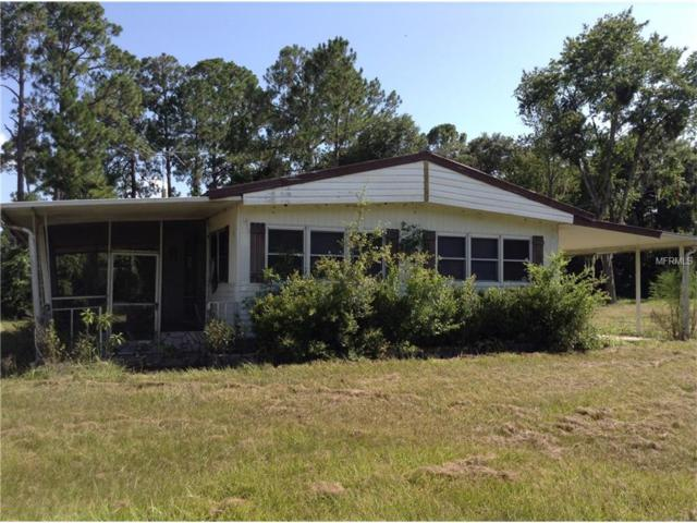 2223 Mcbride Road, Seville, FL 32190 (MLS #V4713496) :: The Duncan Duo Team
