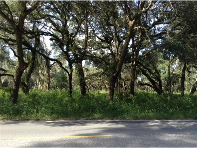 County Road 308, Crescent City, FL 32112 (MLS #V4715005) :: Team Bohannon Keller Williams, Tampa Properties