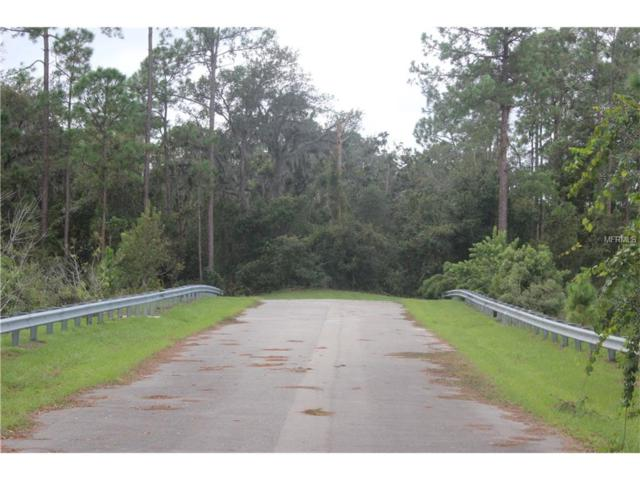 Wayside Drive, Deltona, FL 32738 (MLS #V4715113) :: Godwin Realty Group