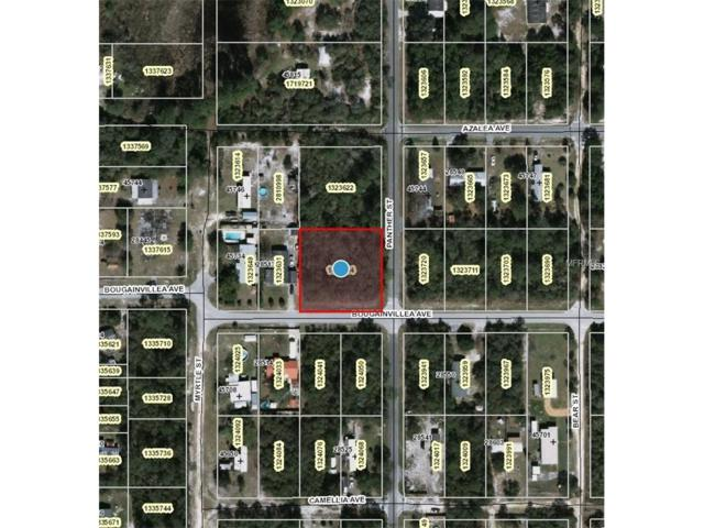 Panther Street, Paisley, FL 32767 (MLS #V4717232) :: Premium Properties Real Estate Services