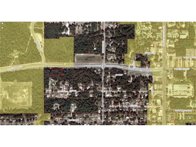 W Rhode Island Avenue, Orange City, FL 32763 (MLS #V4718031) :: Griffin Group