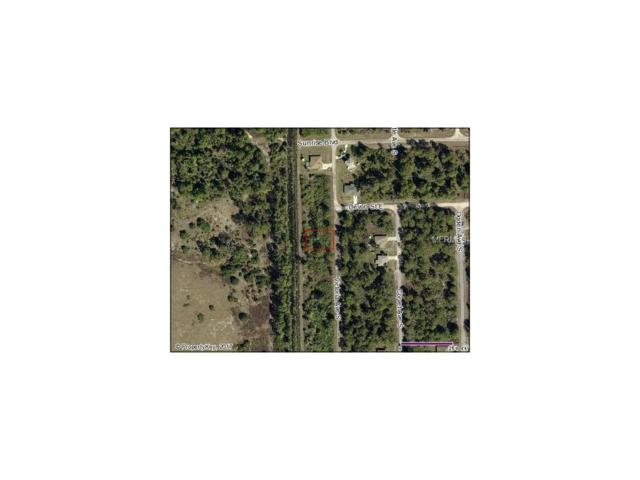 218 Victoria Avenue S, Lehigh Acres, FL 33974 (MLS #V4718515) :: G World Properties