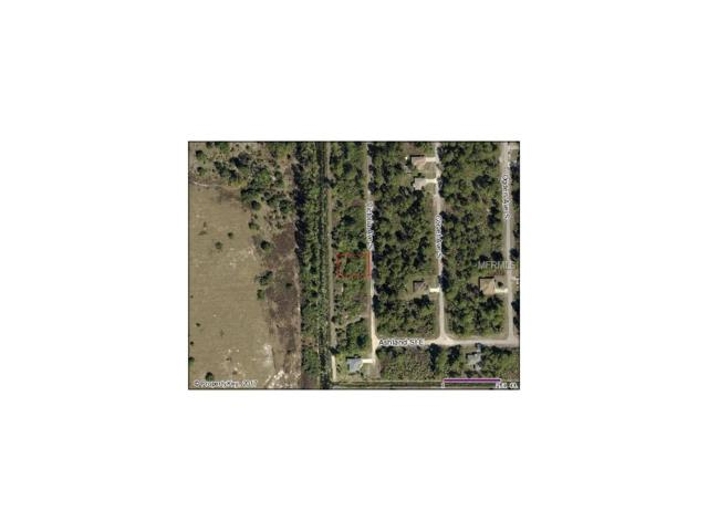 228 Victoria Avenue S, Lehigh Acres, FL 33974 (MLS #V4718516) :: G World Properties