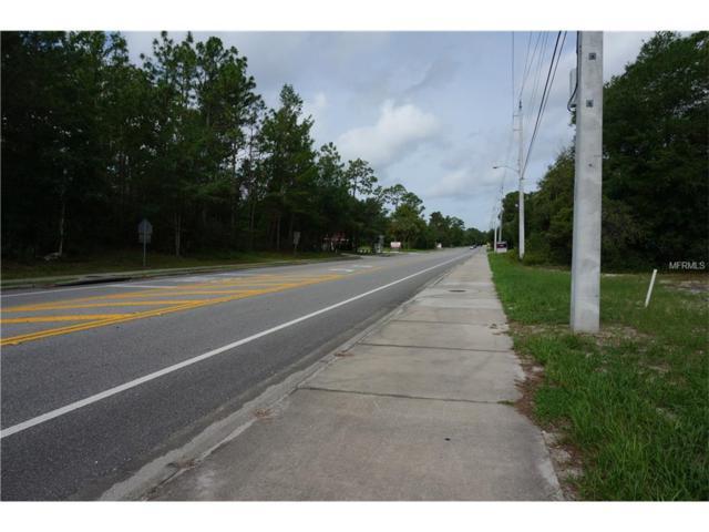244 Fort Smith Boulevard, Deltona, FL 32738 (MLS #V4719108) :: Griffin Group