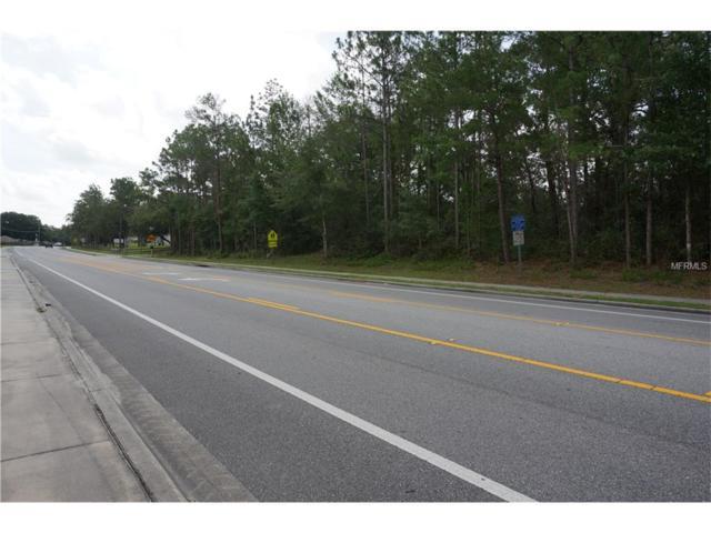249 Fort Smith Boulevard, Deltona, FL 32738 (MLS #V4719109) :: Griffin Group