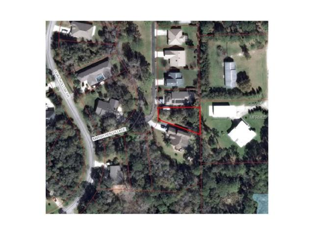 1969 Marsh Hen Village, Deland, FL 32720 (MLS #V4719142) :: Burwell Real Estate