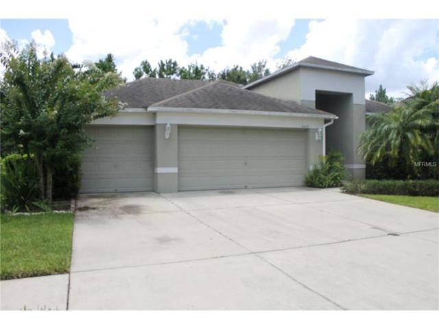 8207 Pinewood Run Court, Tampa, FL 33647 (MLS #V4719623) :: Team Bohannon Keller Williams, Tampa Properties