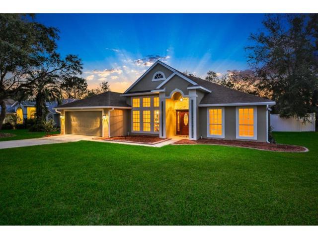 63 Hollow Pine Drive, Debary, FL 32713 (MLS #V4720729) :: Mid-Florida Realty Team