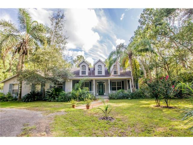 610 Trenia Ann Lane, Orange City, FL 32763 (MLS #V4720741) :: Mid-Florida Realty Team