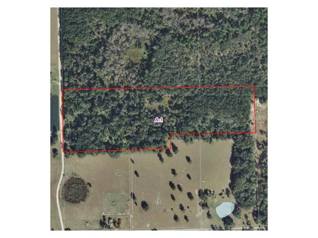 Cade Fernery Road, Seville, FL 32190 (MLS #V4720928) :: KELLER WILLIAMS CLASSIC VI