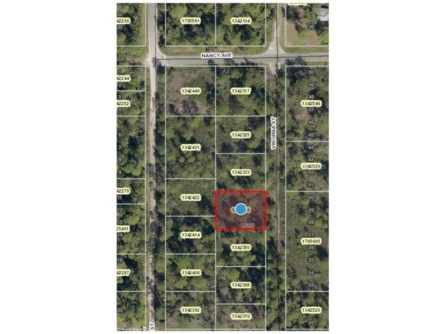 56309 Virginia Street, Paisley, FL 32767 (MLS #V4720956) :: Griffin Group