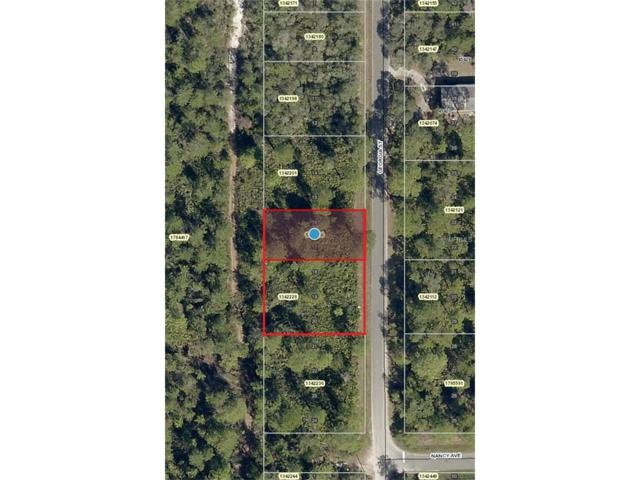 Georgia Street, Paisley, FL 32767 (MLS #V4720965) :: Griffin Group