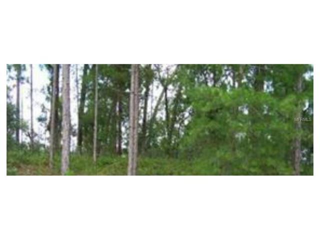 253 Fort Smith Boulevard, Deltona, FL 32738 (MLS #V4720987) :: Griffin Group