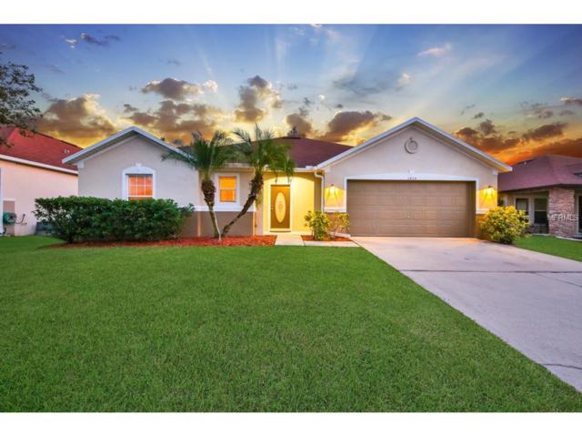 3464 Goldeneye Lane, Saint Cloud, FL 34772 (MLS #V4721648) :: Godwin Realty Group