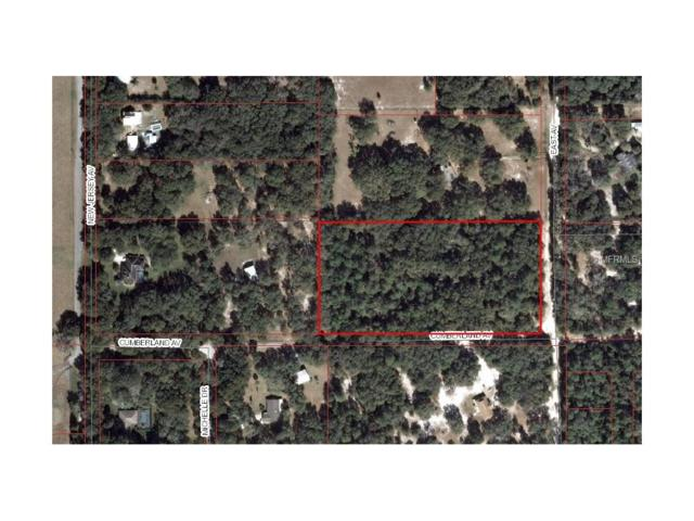 East Avenue, De Leon Springs, FL 32130 (MLS #V4721705) :: The Duncan Duo Team