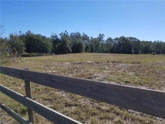 Knoll Top Lane, Eustis, FL 32736 (MLS #V4722050) :: Godwin Realty Group