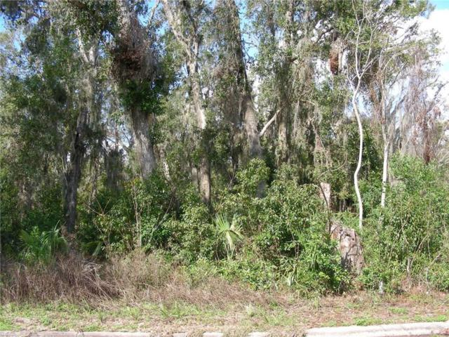 Woodmont, Deland, FL 32724 (MLS #V4722935) :: The Lockhart Team