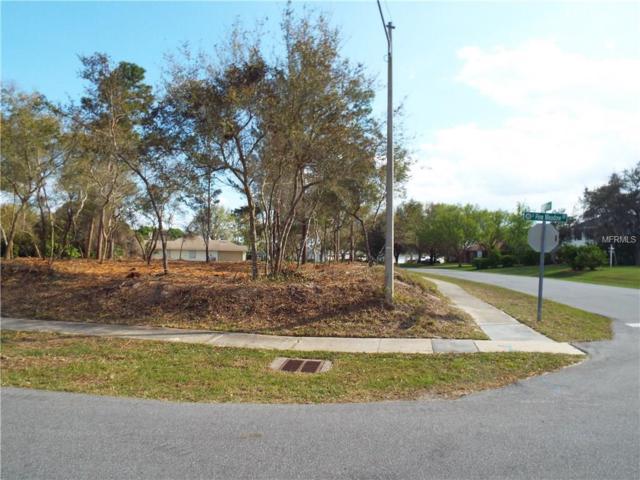 554 S Pine Meadow Drive, Debary, FL 32713 (MLS #V4723240) :: The Lockhart Team