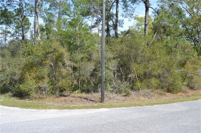 Maryland Street, Paisley, FL 32767 (MLS #V4723328) :: The Duncan Duo Team
