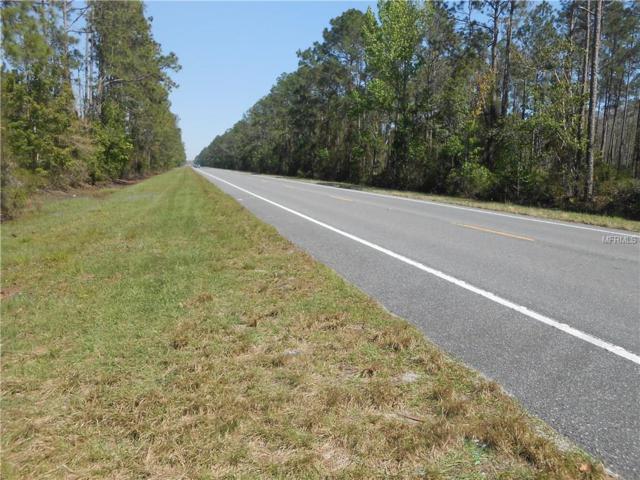 State Road 40, Pierson, FL 32180 (MLS #V4723371) :: KELLER WILLIAMS CLASSIC VI